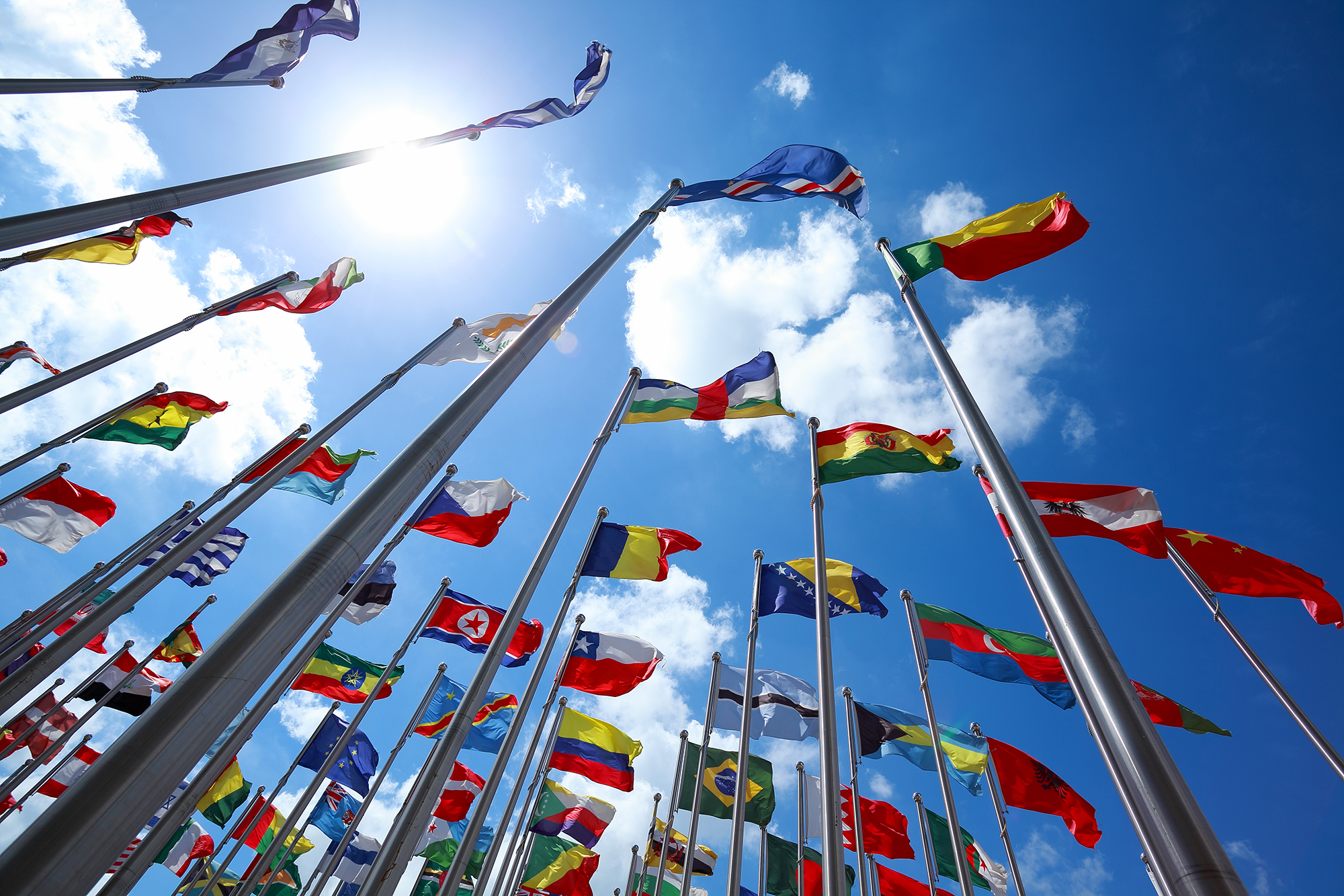 MiTek's Global Reach and Scale - A large number of flagpoles with flags from different nations